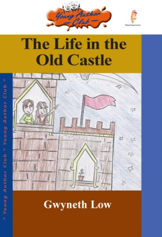 the-life-in-the-old-castle