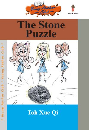 the-stone-puzzle