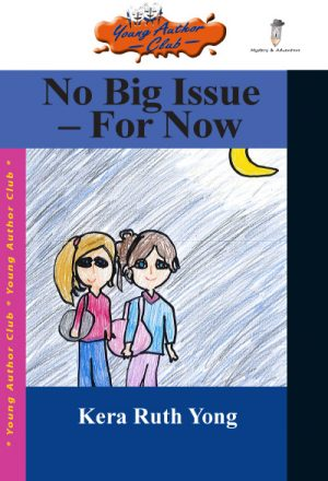 no-big-issue-for-now